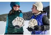 Yellowstone snowmobile tours